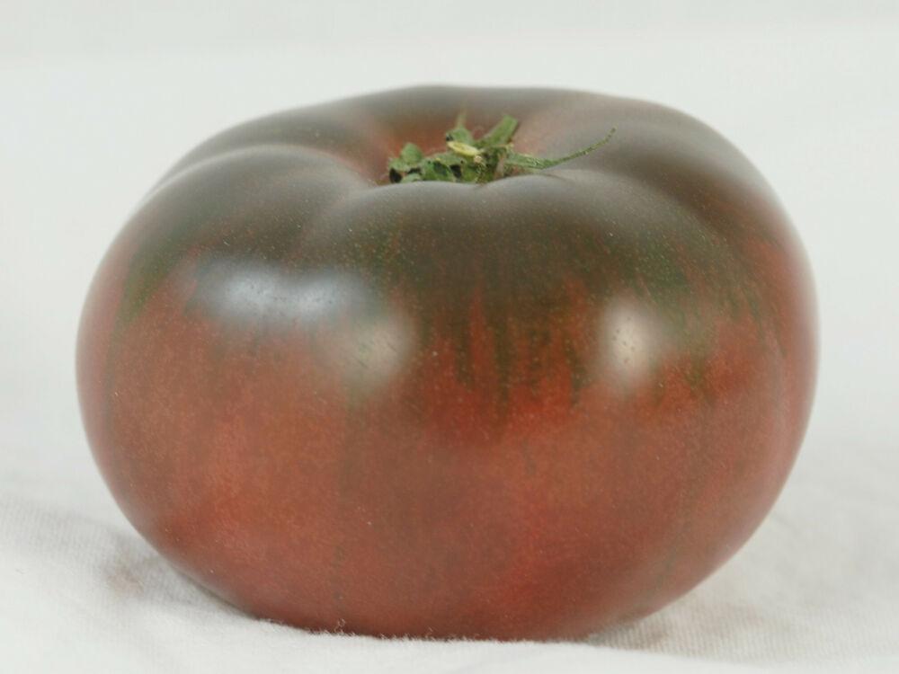 Tomato - Cherokee Purple - 148RG90
